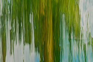 Willow tree in green and blue