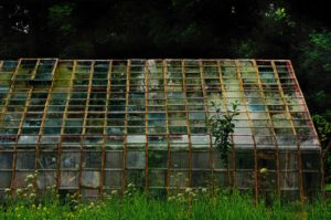 Glass House in biological garden