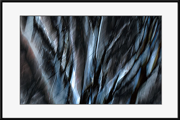 Abstract image of tree branches